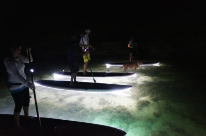 Custom Light Up Paddle Boards
